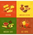Mexican Design Concept vector image