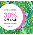 summer sale tropical banner with palm leaves vector image vector image