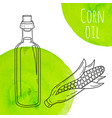 hand drawn corn oil bottle with green watercolor vector image