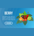 berry concept banner isometric style vector image vector image