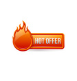 Glossy hot offer button with icon vector image vector image