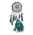 hand drawn ethnic dreamcatcher vector image