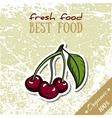 Healthy Food Cherry vector image