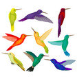 hummingbirds sest tiny birds with bright colorful vector image