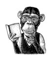 monkey hipster is reading a book vintage black vector image vector image