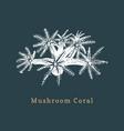 mushroom coral drawing of sea vector image