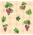 pattern with grape vector image