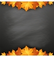 Autumn background with maple leaves on blackboard vector image vector image
