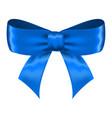 blue silk ribbon bow vector image