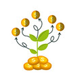 growth funds economy design vector image