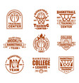 set isolated basketball icons with ball basket vector image