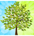 summer tree with green leaves on a half green and vector image vector image
