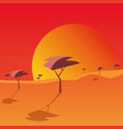 sunset landscape design vector image