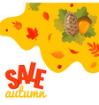 autumn sale discount banner with pine cone acorn vector image vector image