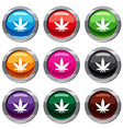 cannabis leaf set 9 collection vector image vector image