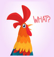 cartoon rooster with bright feathers vector image