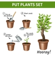 Putting Plants Icons Set vector image
