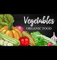 vegetables chalkboard sketch farm veggies vector image