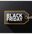 Black Friday sale poster or banner vector image
