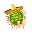 cinco de mayo mexican party sombrero greeting card vector image
