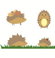 drawn hedgehog with berries and leaves on white vector image vector image