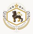 heraldic design vintage emblem vector image vector image