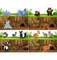 set of animal in nature vector image vector image