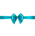 shiny satin ribbon on white background bow vector image