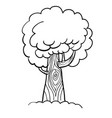 cartoon image of tree icon tree symbol vector image