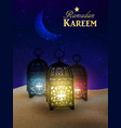 Lanterns stand in the desert at night sky vector image