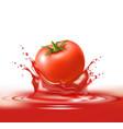 realistic ripe tomato red juice splash vector image vector image
