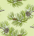 Seamless texture Pine branch with snow vector image vector image