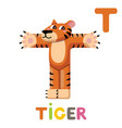 t is for tiger letter t tiger cute animal vector image vector image