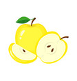 yellow apples with green leaves apple slice vector image