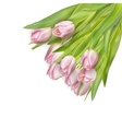 Beautiful bouquet of pink tulips EPS 10 vector image vector image