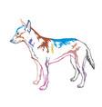 colorful decorative standing portrait of belgian vector image vector image