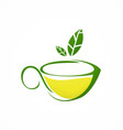 cup tea green tea herbal logo vector image