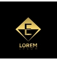 Golden E letter vector image vector image