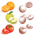 Orange Apple Tomato vector image vector image