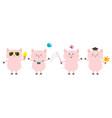 pig piglet set sun glasses icecream bird vector image