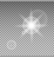 sunlight special lens flare light effect vector image vector image