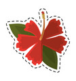 cartoon hibiscus flower exotic icon vector image vector image