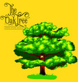 cartoon isolated oak summer tree on background vector image vector image