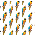 Colorful parrot pattern vector image vector image