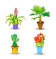 Decorative Office Flower Icons Set vector image