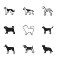 Dog breeds set icons in black style Big vector image vector image