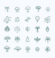 set of tree shape line icons vector image