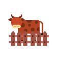cow farm in fence vector image vector image