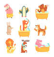 cute animals bathing and washing in water set for vector image