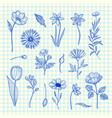 hand drawn flowers set on blue cell sheet vector image vector image